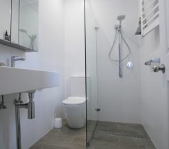 Sydney Bathroom Renovators - Small bathroom with shower